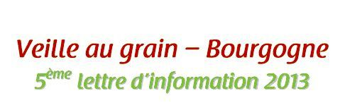 VEILLE AU GRAIN - Lettre d'information n°5 2013