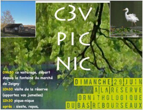 Pique-nique C3V Ouvert à tous - Dimanche 29 juin à la réserve ornithologique  Réserve Ornithologique de Bas-Rebourseaux Vergigny