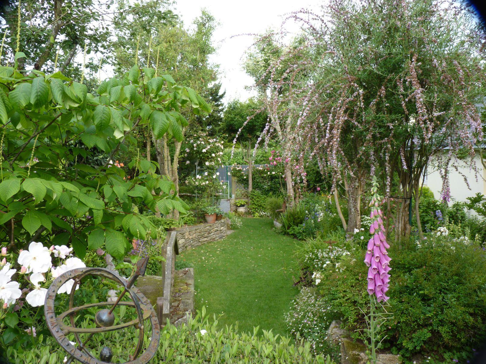 le jardin en juin jardindelemo