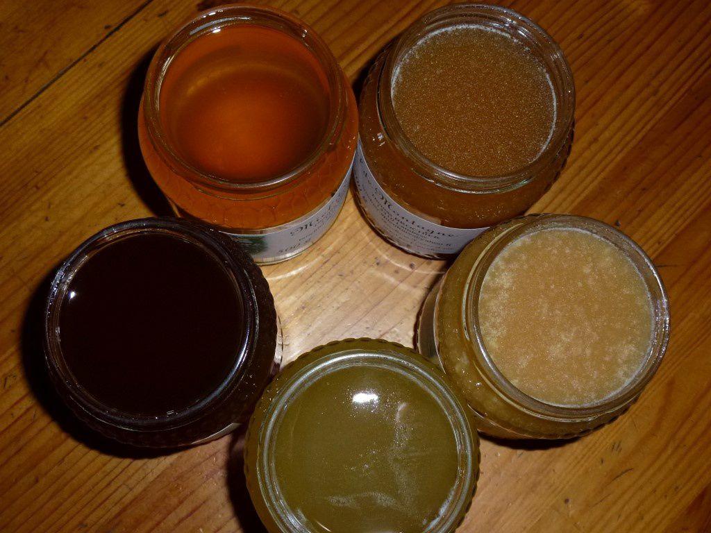 Quelques miels de couleur et de texture différentes