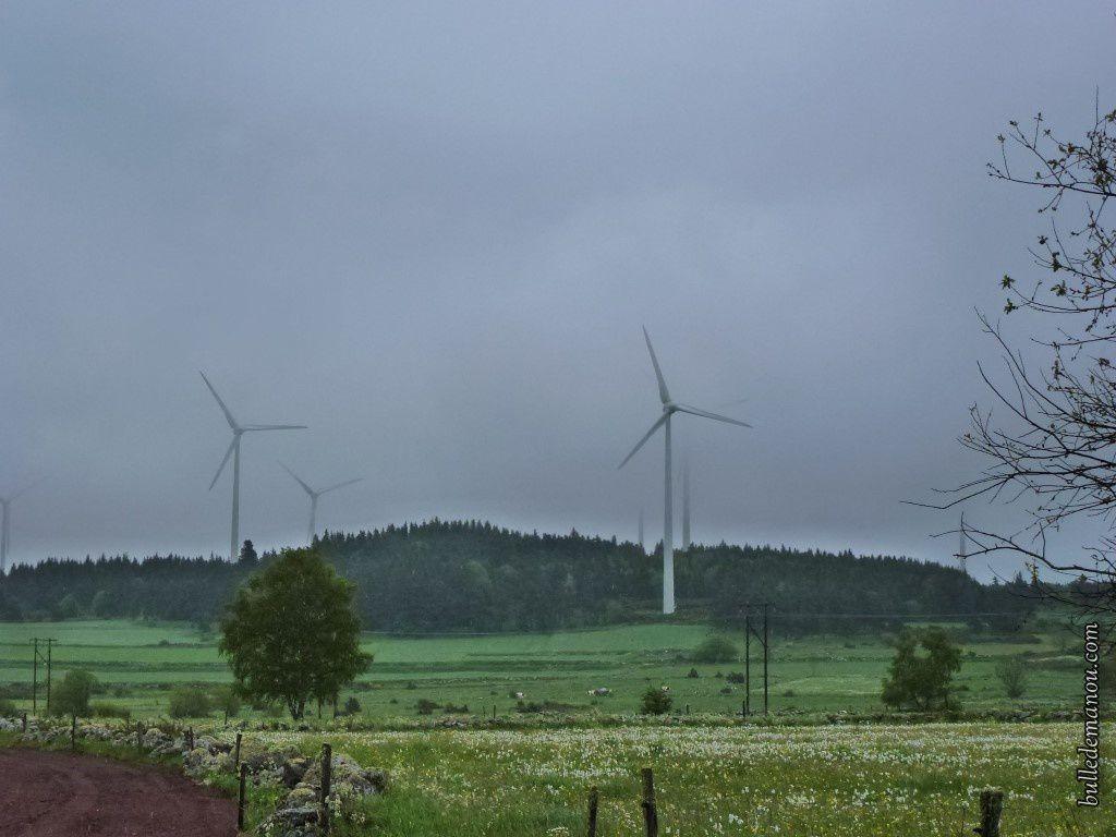 Jours de pluie et de brouillard sur le parc éolien...
