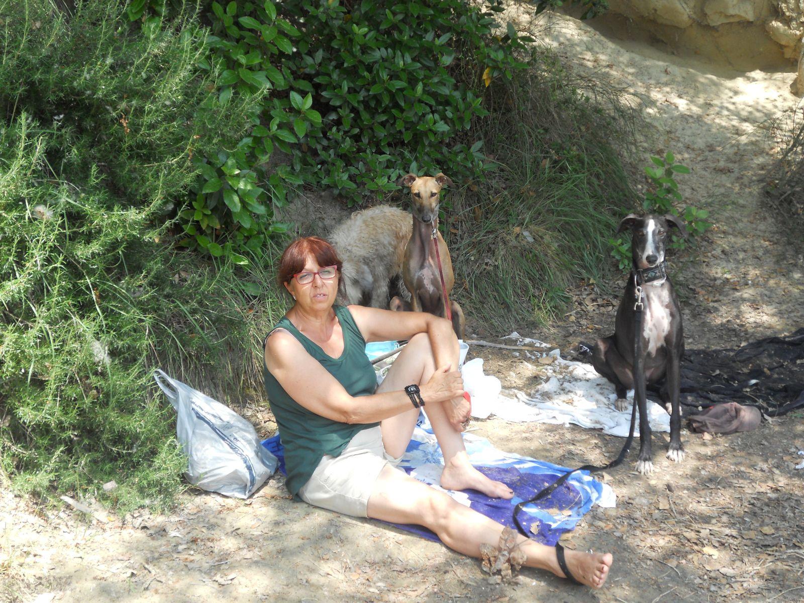 Ballades en Provence...