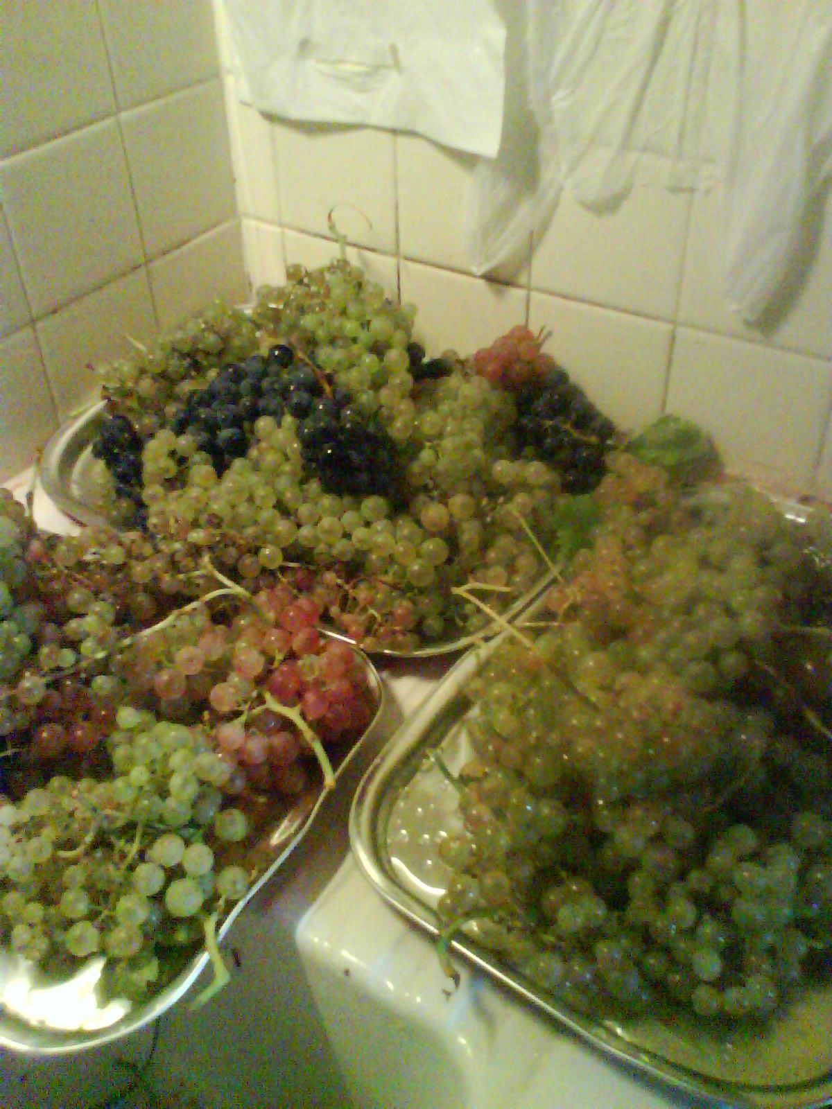 Ma cure raisin commence aujourd'hui