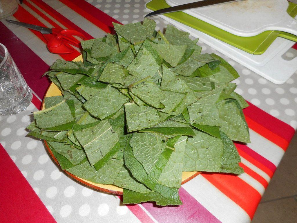 Plantes sauvages et gastronomie végétale