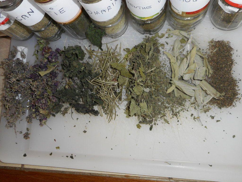 les plantes aromatiques en poudre