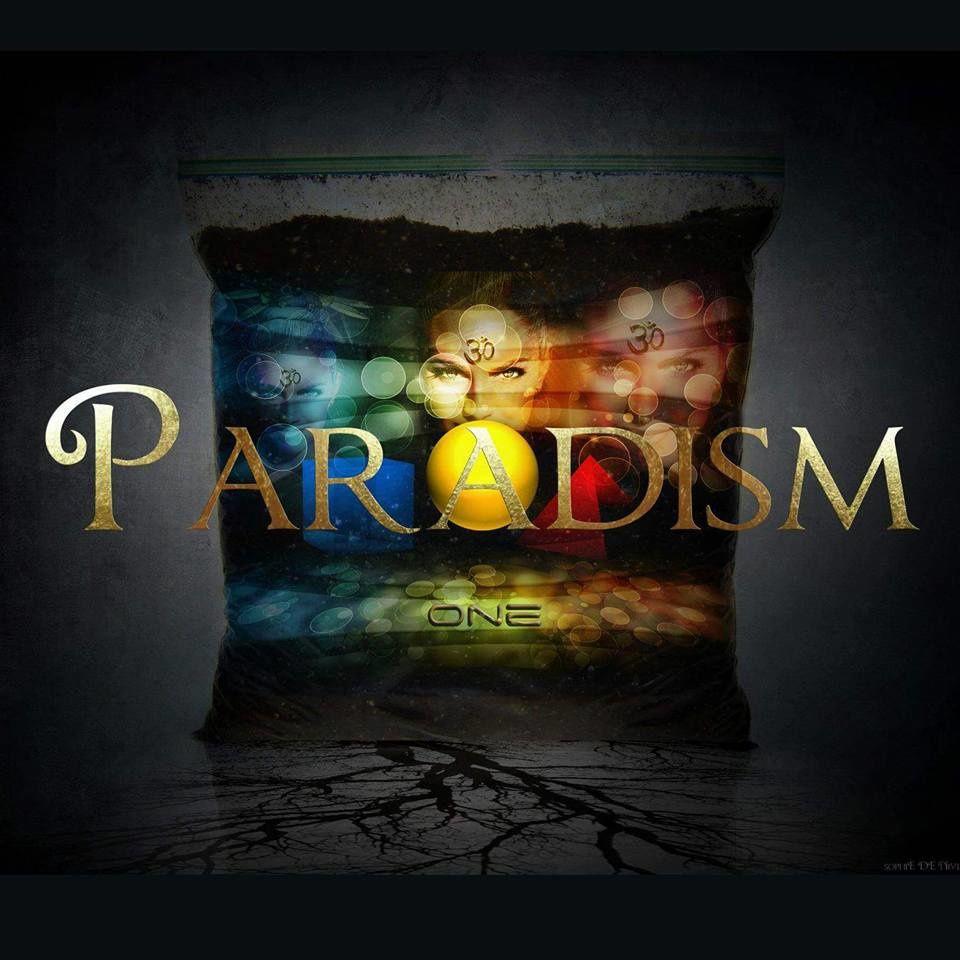 PARADISME - répartition des richesses, revenu de base inconditionnel....ça s'en vient !
