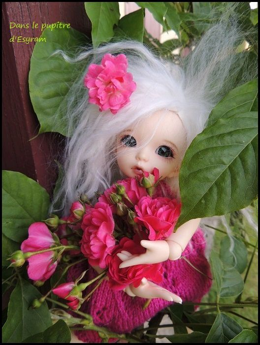 Ma petite Rose!
