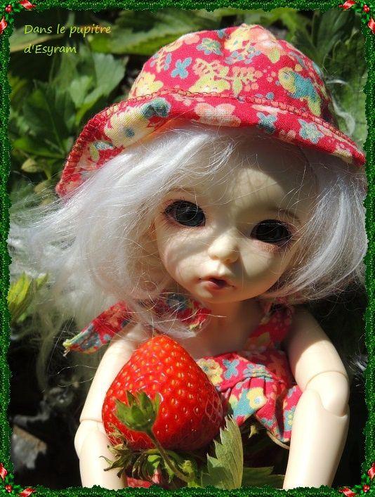 Avril et les fraises