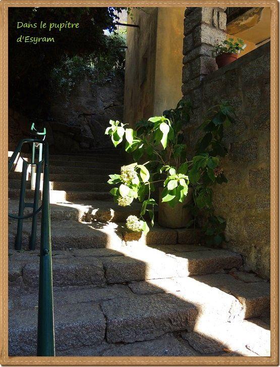 Corsica Bella (11) Sartène