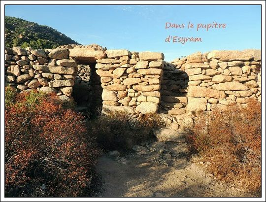 Corsica Bella (6) marché et préhistoire !