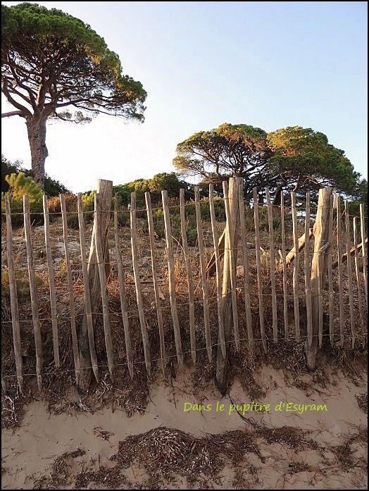 Corsica Bella (2) Palombaggia
