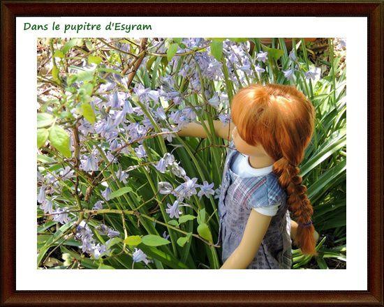 Dans le jardin de Mamie