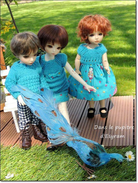 La famille turquoise