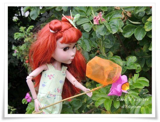 A la chasse aux papillons !