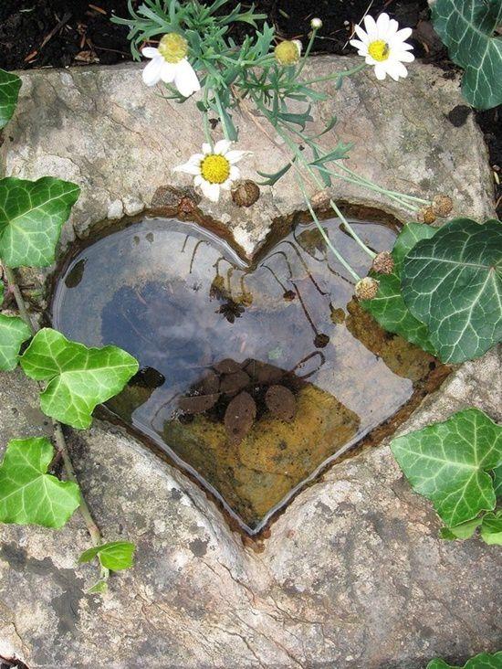 Reflet de coeur