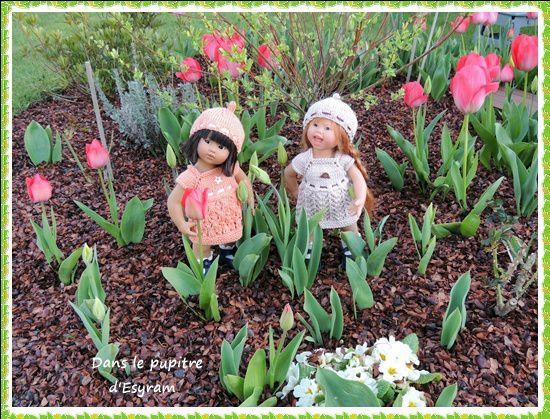 Les tulipes géantes