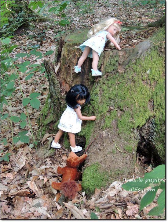 Une rencontre &quot&#x3B;forestière&quot&#x3B;