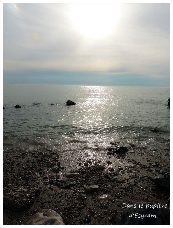 Nausicaa, Boulogne-Sur-Mer