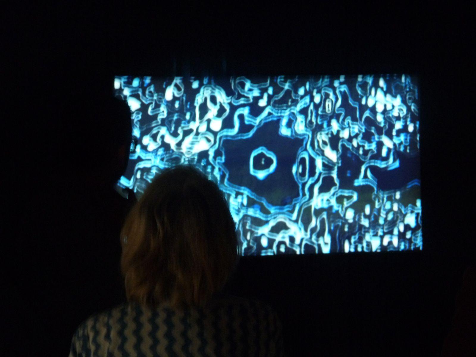 video Le test de Bovis, 2016(photo DLLT)