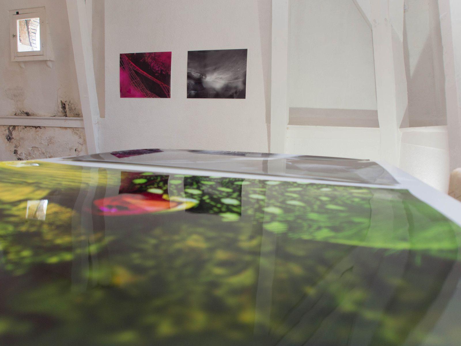 Son exposition au jjardi d'hélys photographiée par Christelle Mas
