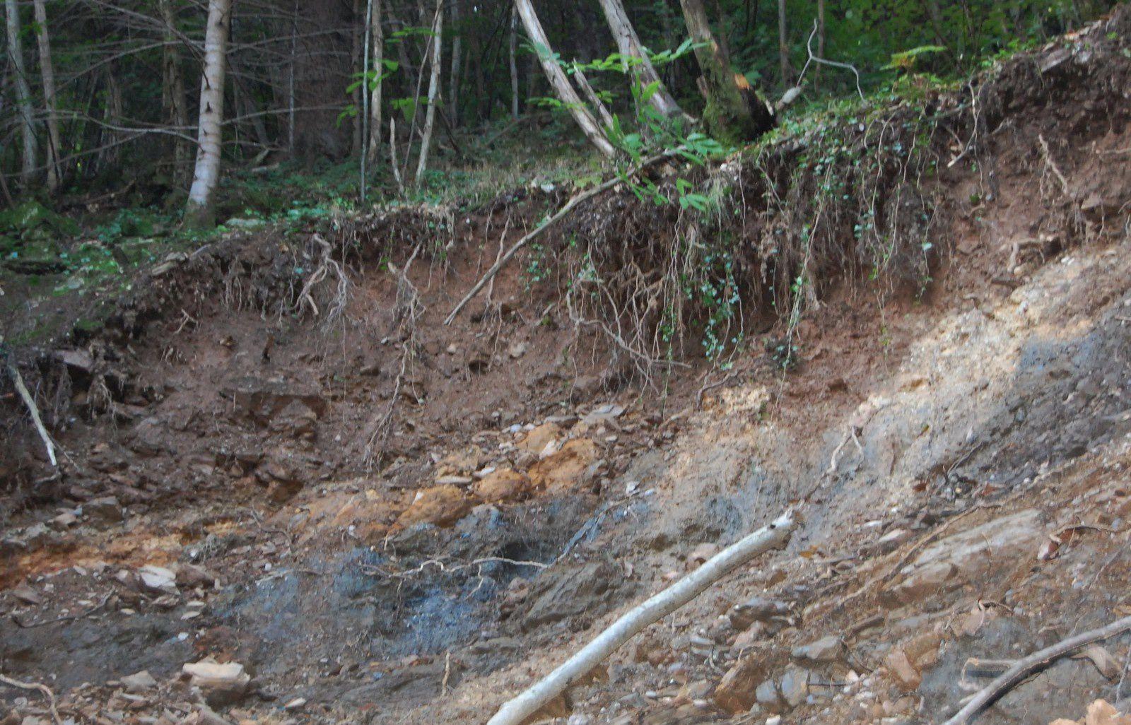 Arbres en travers du chemin, éboulements, glissements de terrains, c'est pas beau à voir...
