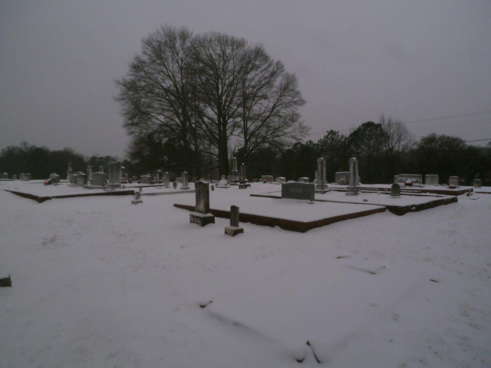 """J'allais dire : """"Pas de vie dans le cimetière"""" : je ne suis pas sûr que la neige y soit pour grand-chose..."""