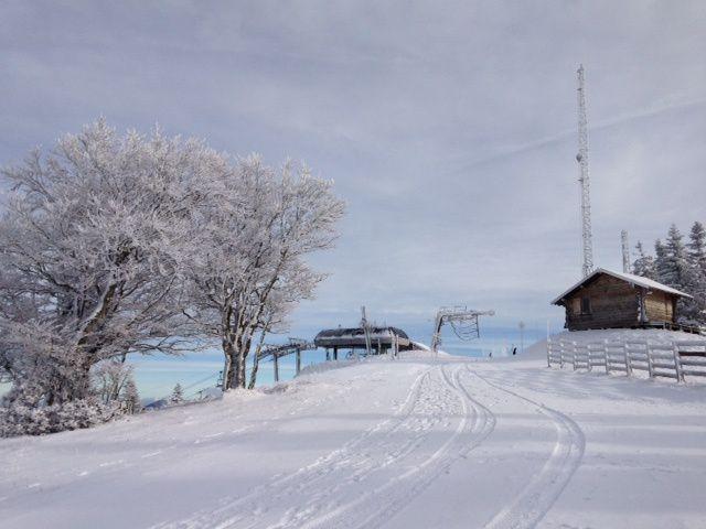 Il a enfin neigé sur le mont d'or