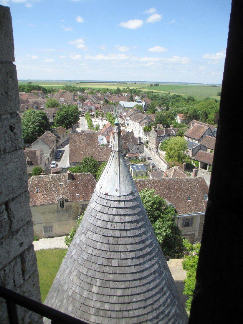 Juin 2015 : La Brenne (F)