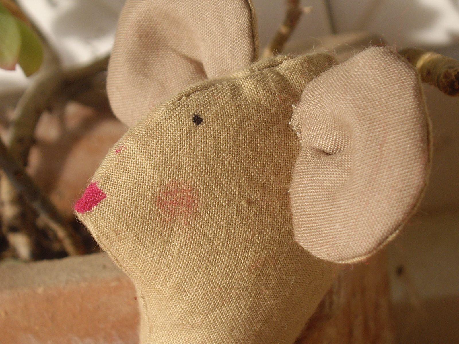 Une petite souris ...