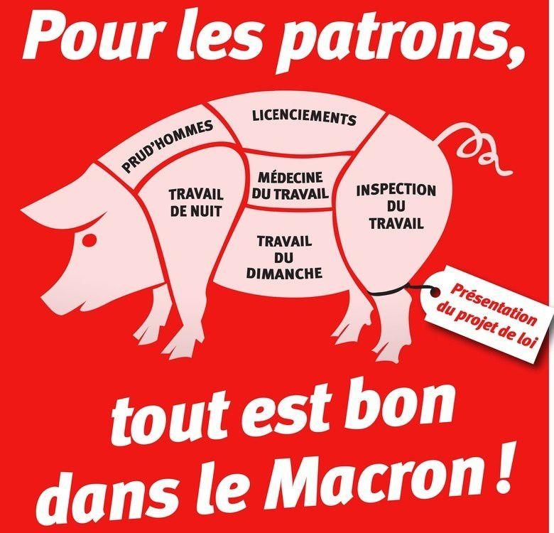 Pour les patrons, tout est bon dans le Macron.