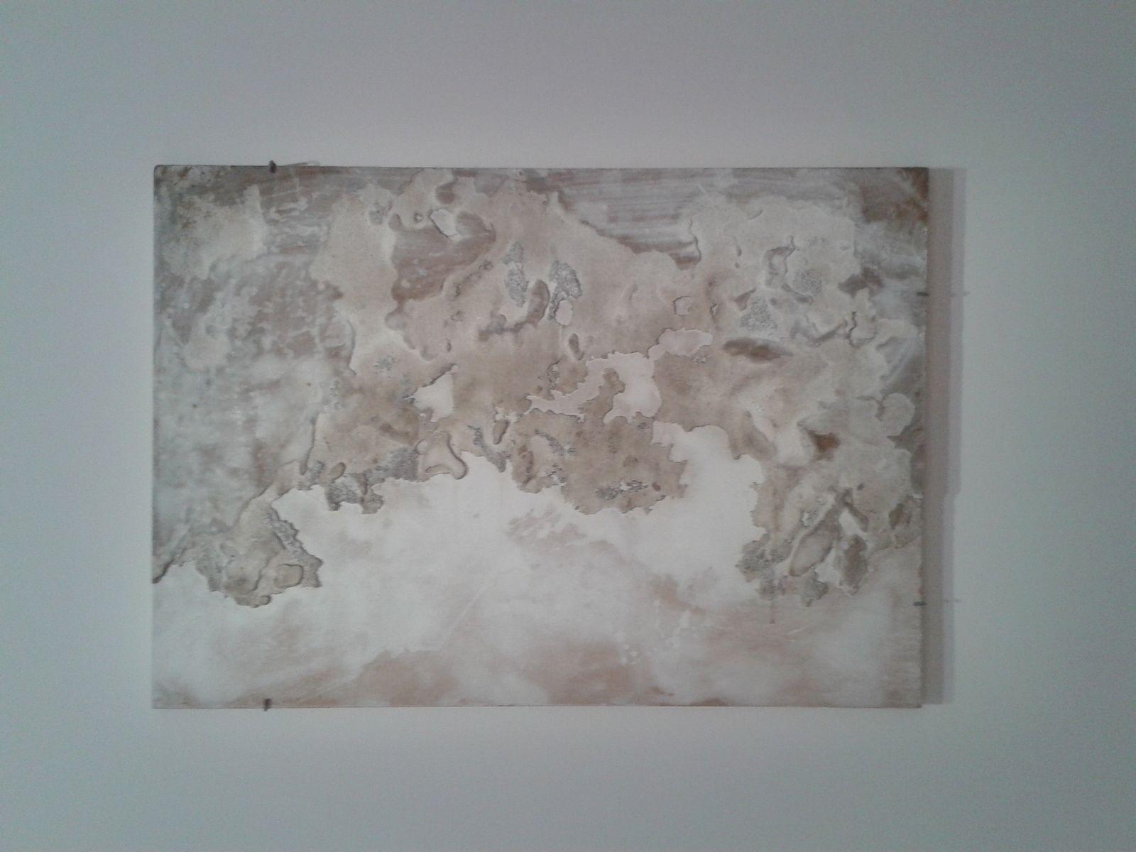 Sol y sombra, une exposition de Miquel Barceló à la Bibliothèque Nationale de France : découverte de son oeuvre imprimée et de ses expériences de la matière