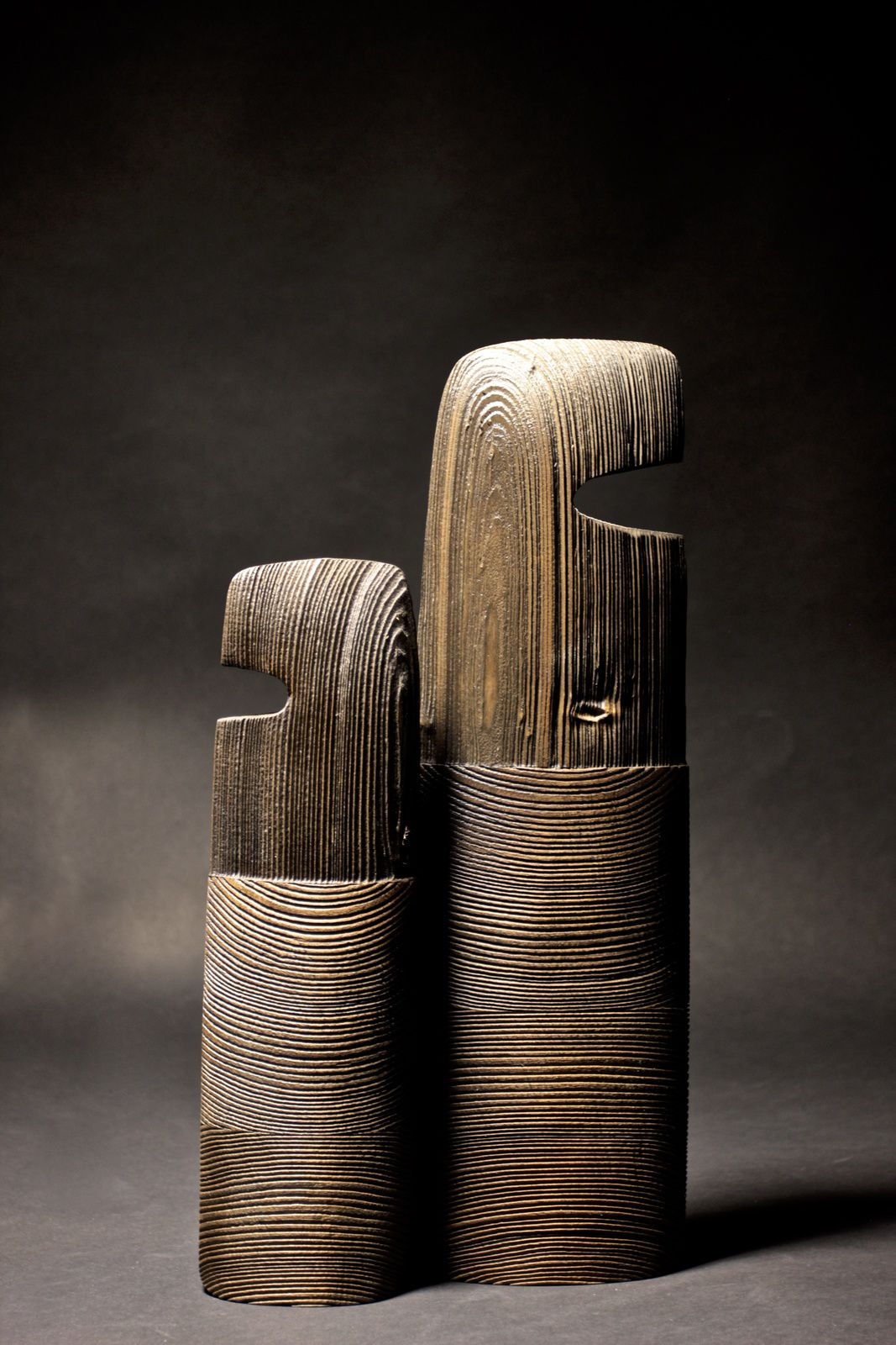 sculptures de Thierry Martenon