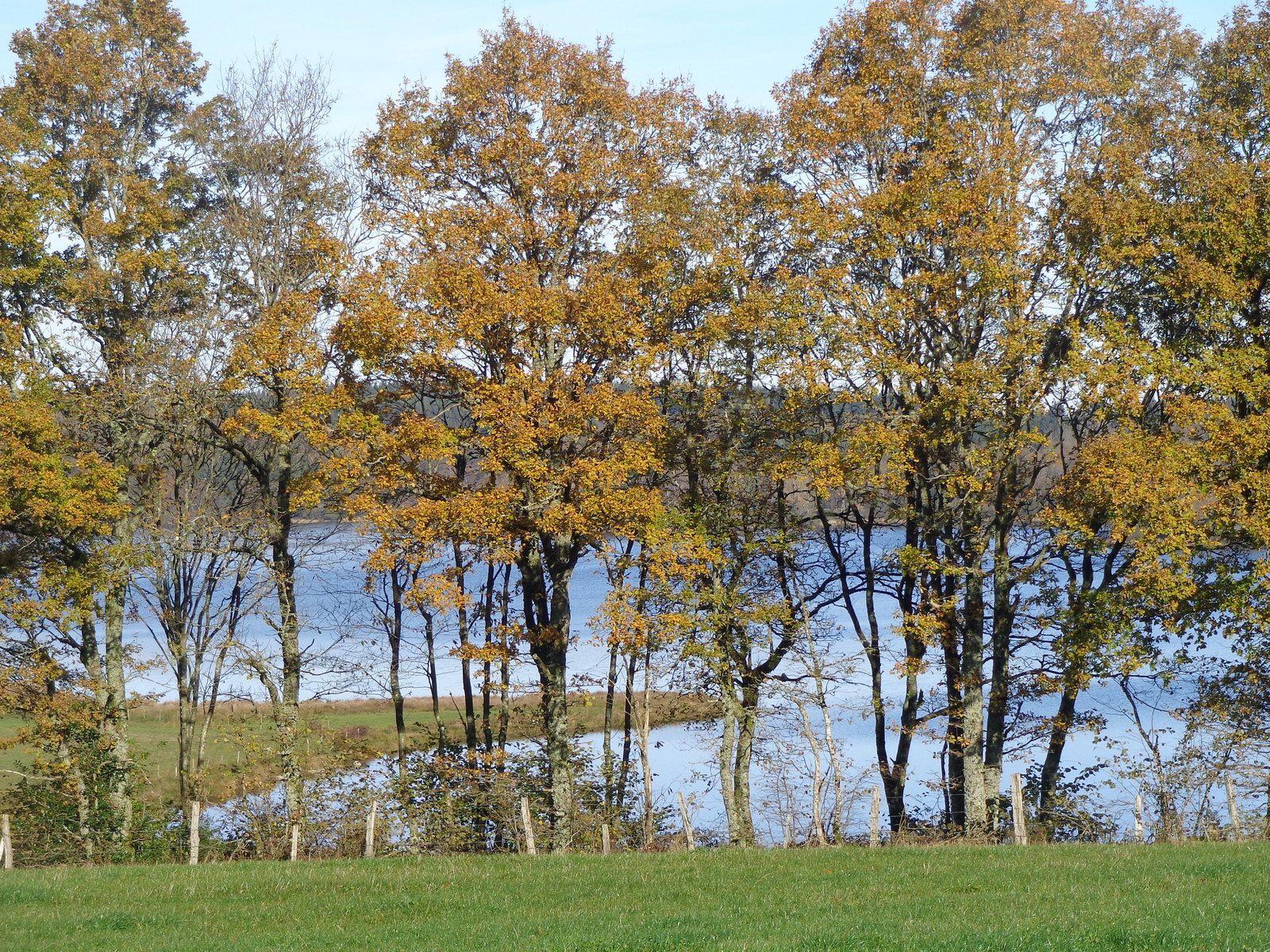 Le Morvan, parc naturel régional
