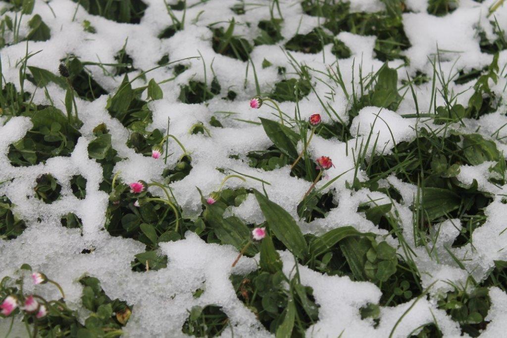 la neige encore !!!!