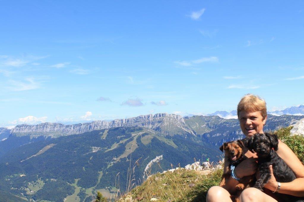 on reconnait le Mont Blanc à gauche de la photo