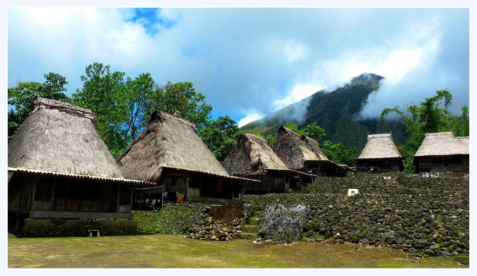 Flores:une île animiste aux rizières en toile d'araignée