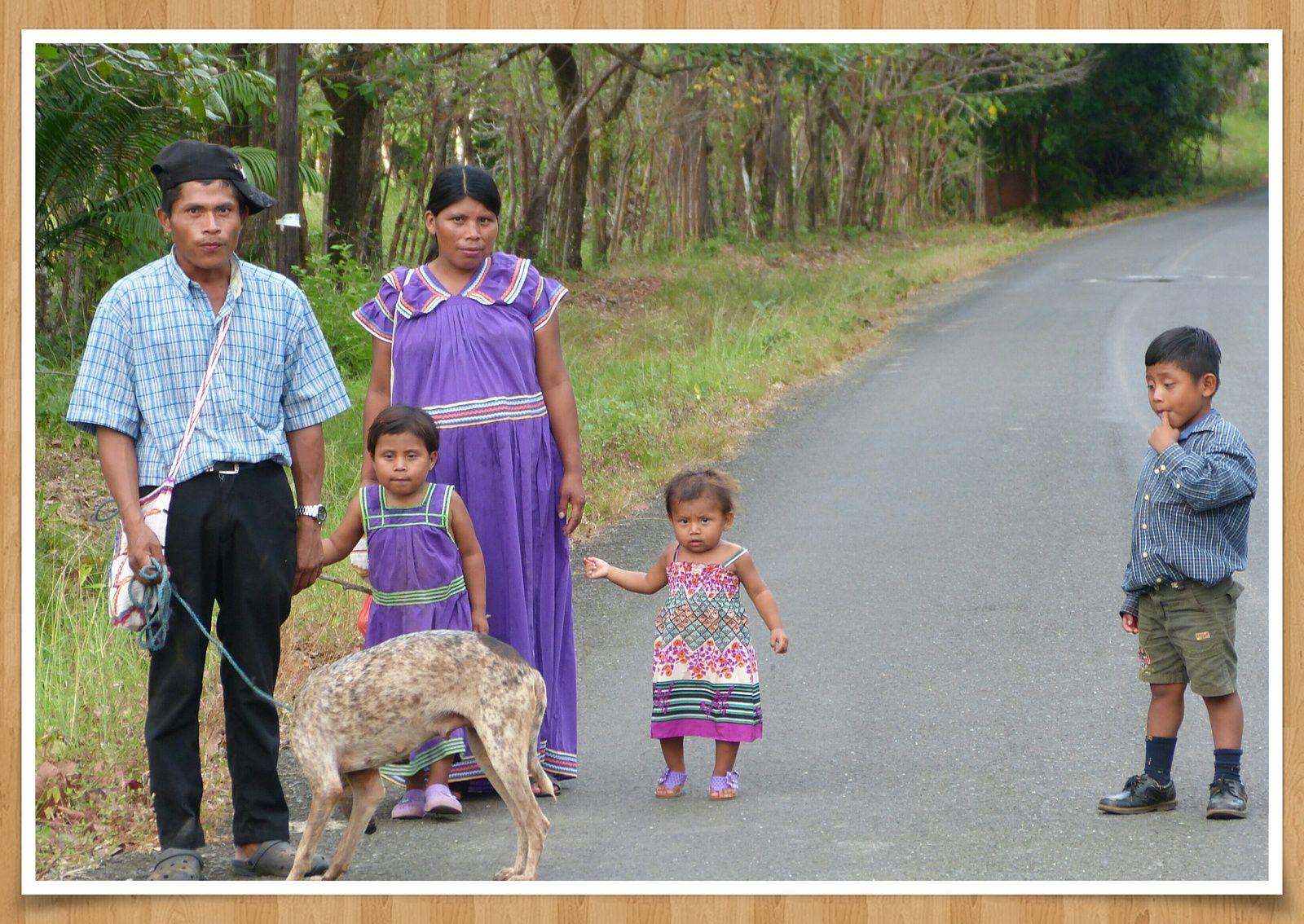 Fleurs... et faune du Panama en couleurs