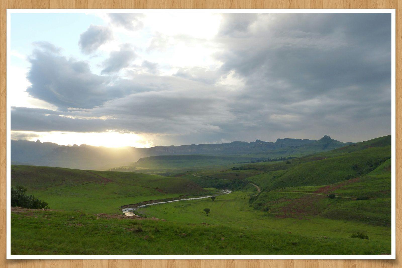 Nos petits LU en Afrique du Sud