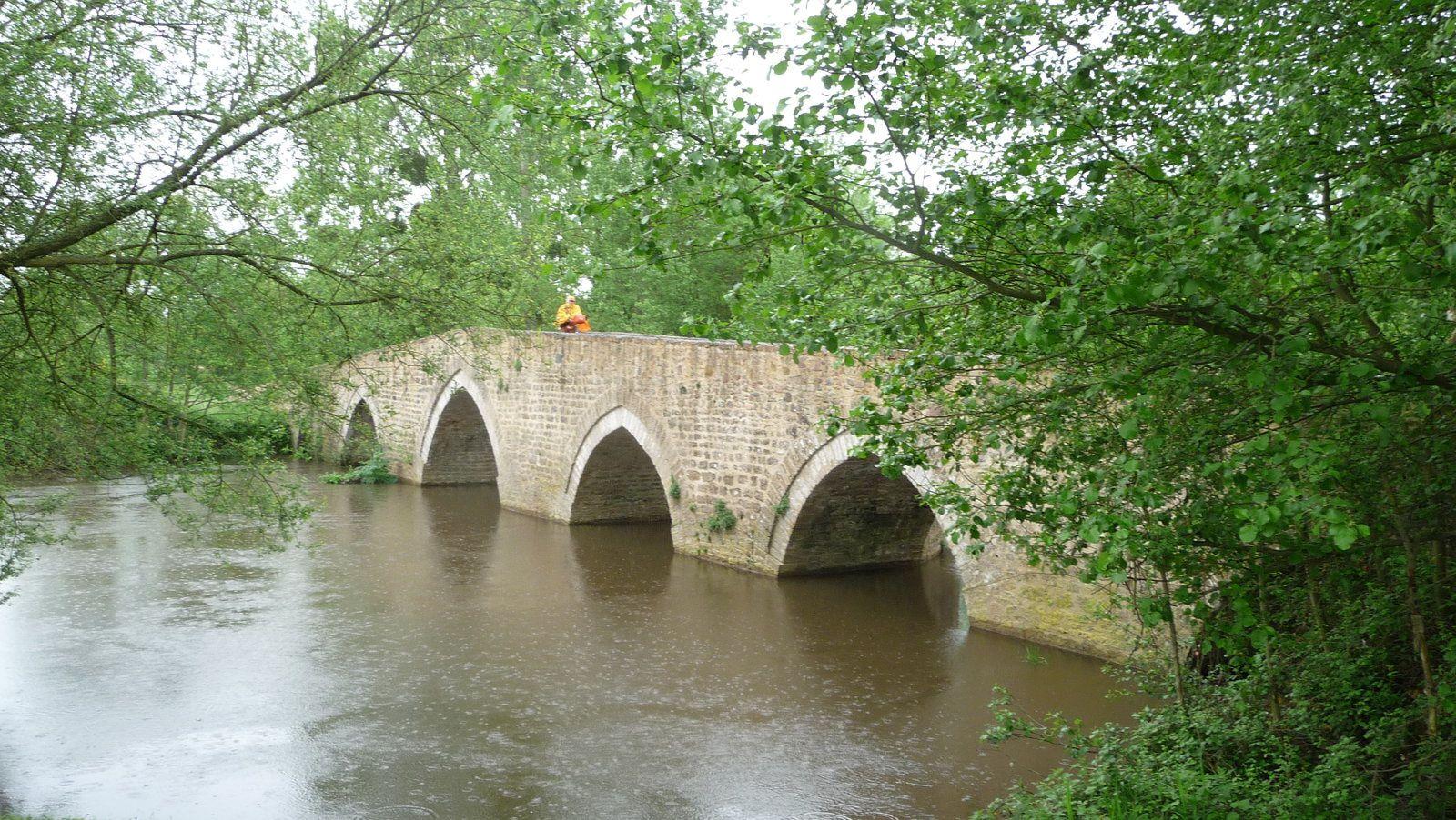 Toujours des ponts