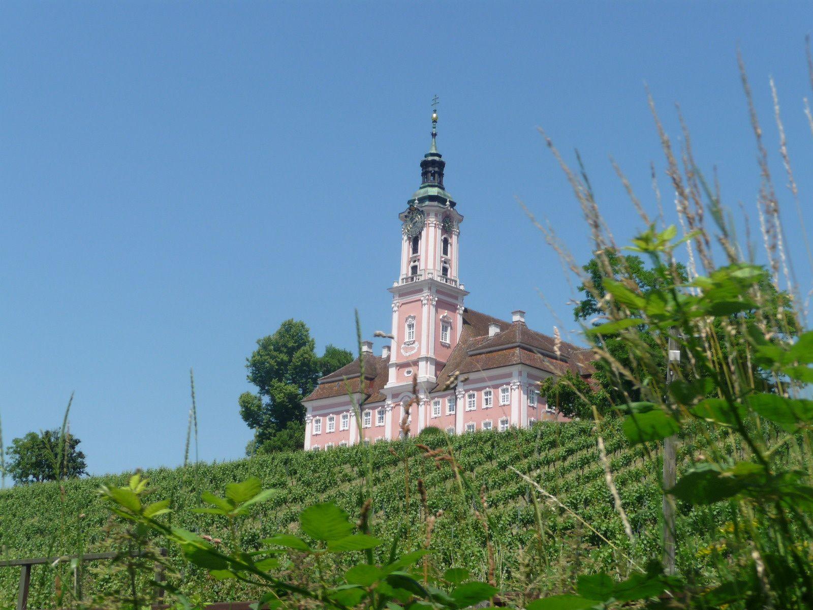 Des vignes sous l'église de Sipplingen