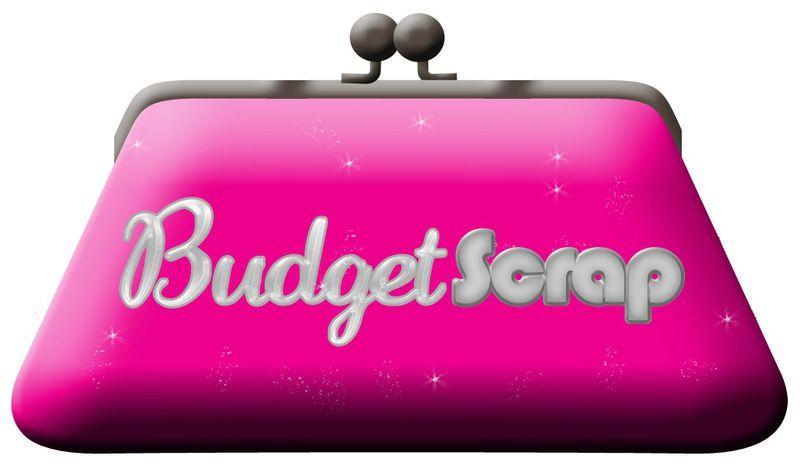 Budget scrap