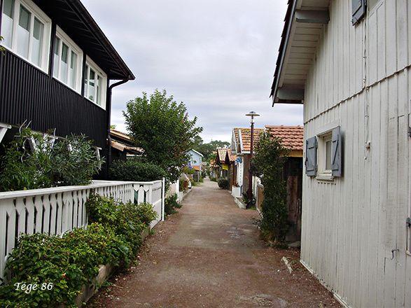 Vacances Octobre 2014 : le Bassin d'Arcachon