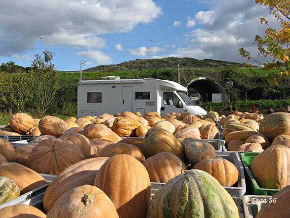 Vacances Novembre 2014 : Au bord du Douro