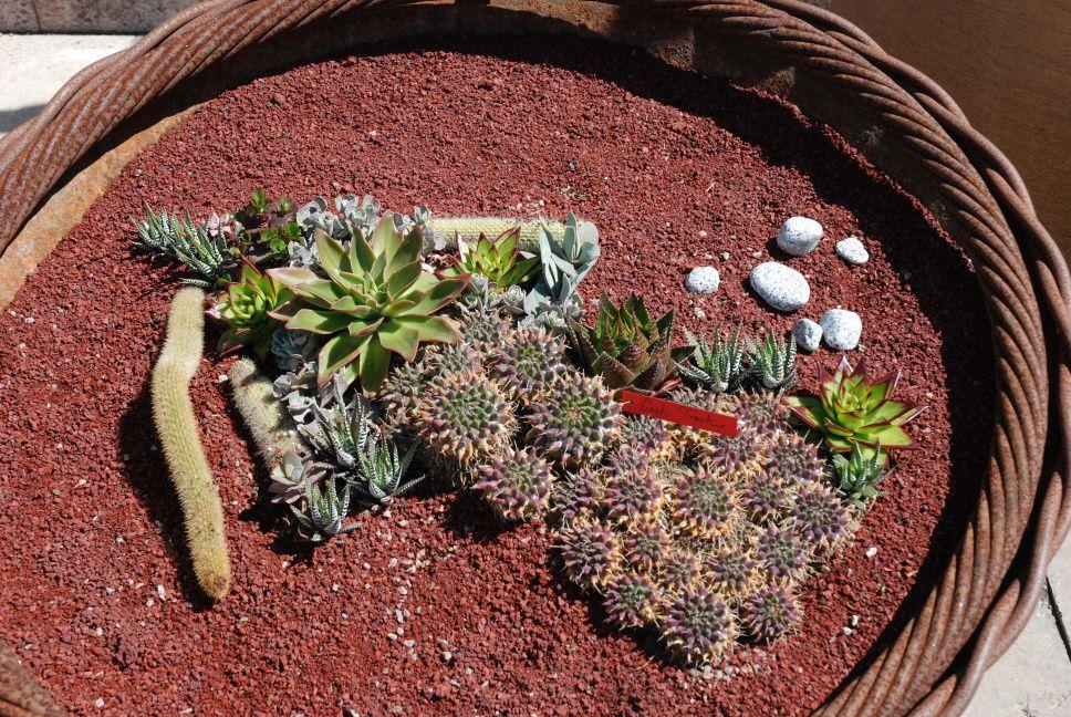 Göteborg : la serre du jardin botanique