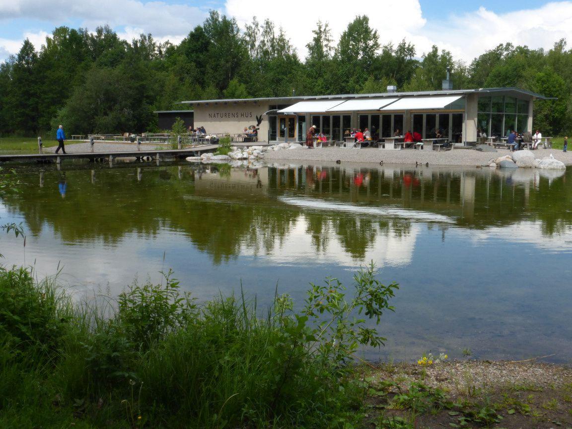 Örebro 4 : le parc aquatique Rynningeviken