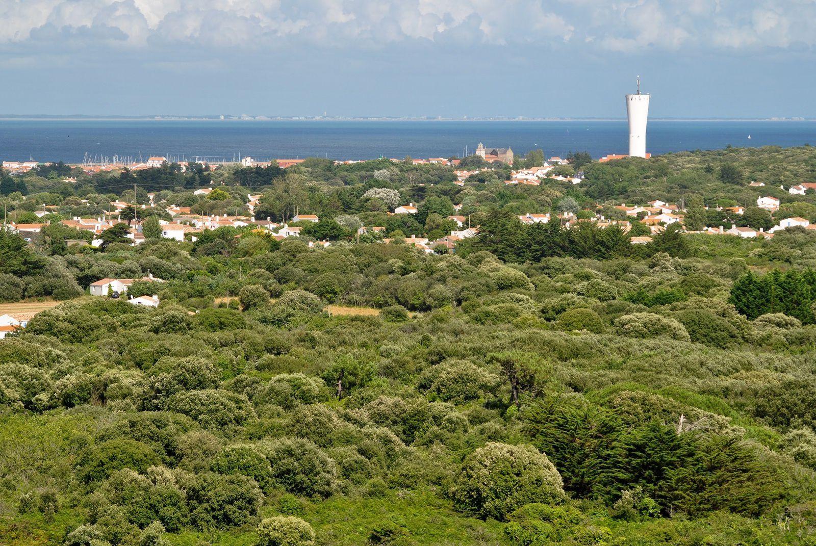 L'Ile d'Yeu: Vue générale prise depuis le haut d'un phare en direction du continent. (Photo rediffusée).