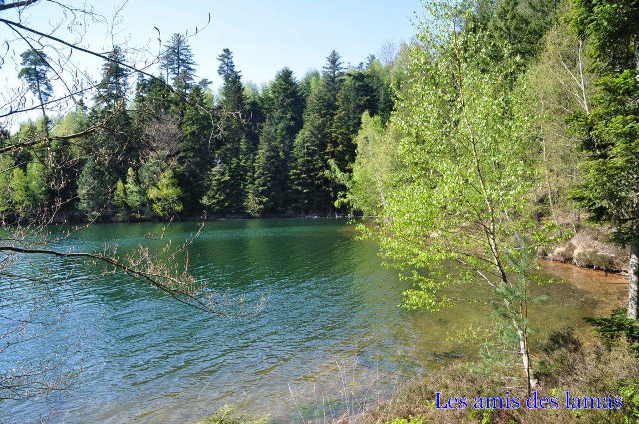 Autour du lac de pierre percée