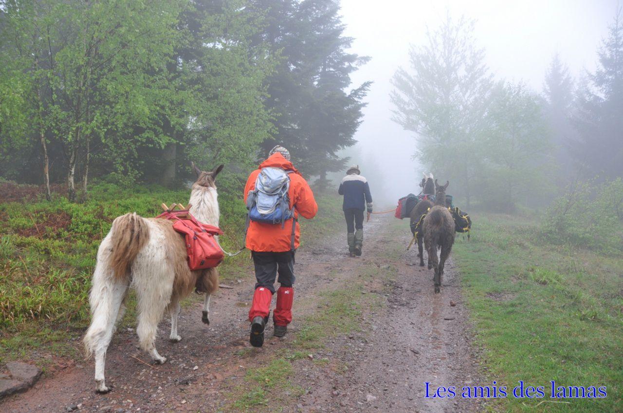 En route sous quelques gouttes de pluies