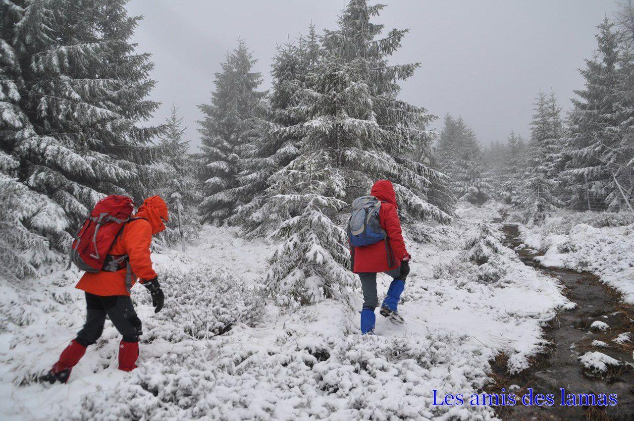 De la neige mais surtout un sentier devenu torrent au niveau des pierres à cupules