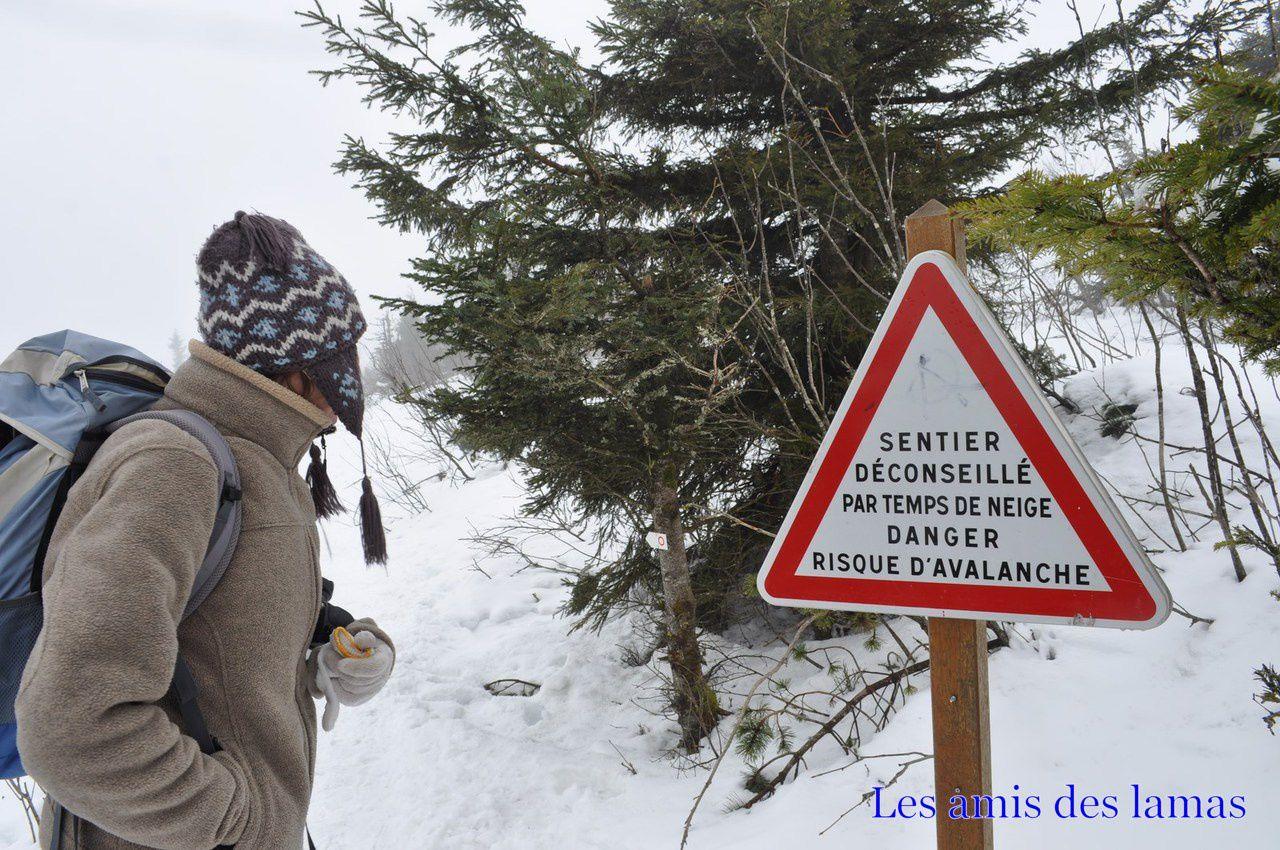 Panneaux signalant des possibilités de risques d'avalanches au dessus du lac blanc